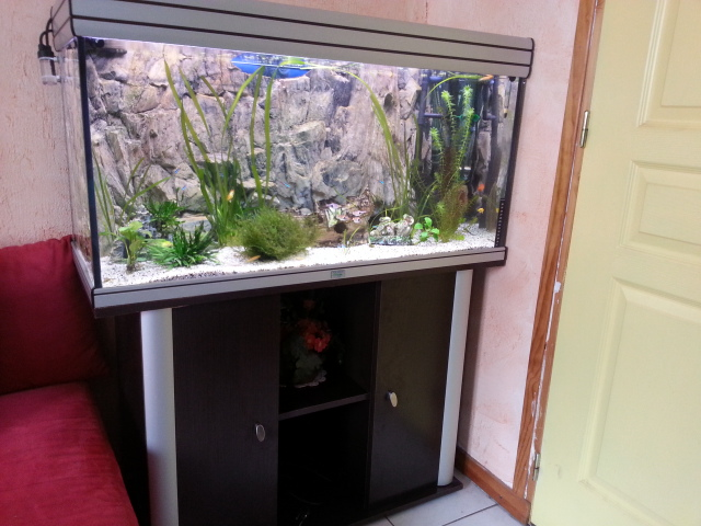 aquarium aquadisio 200 litres par sisko28. Black Bedroom Furniture Sets. Home Design Ideas