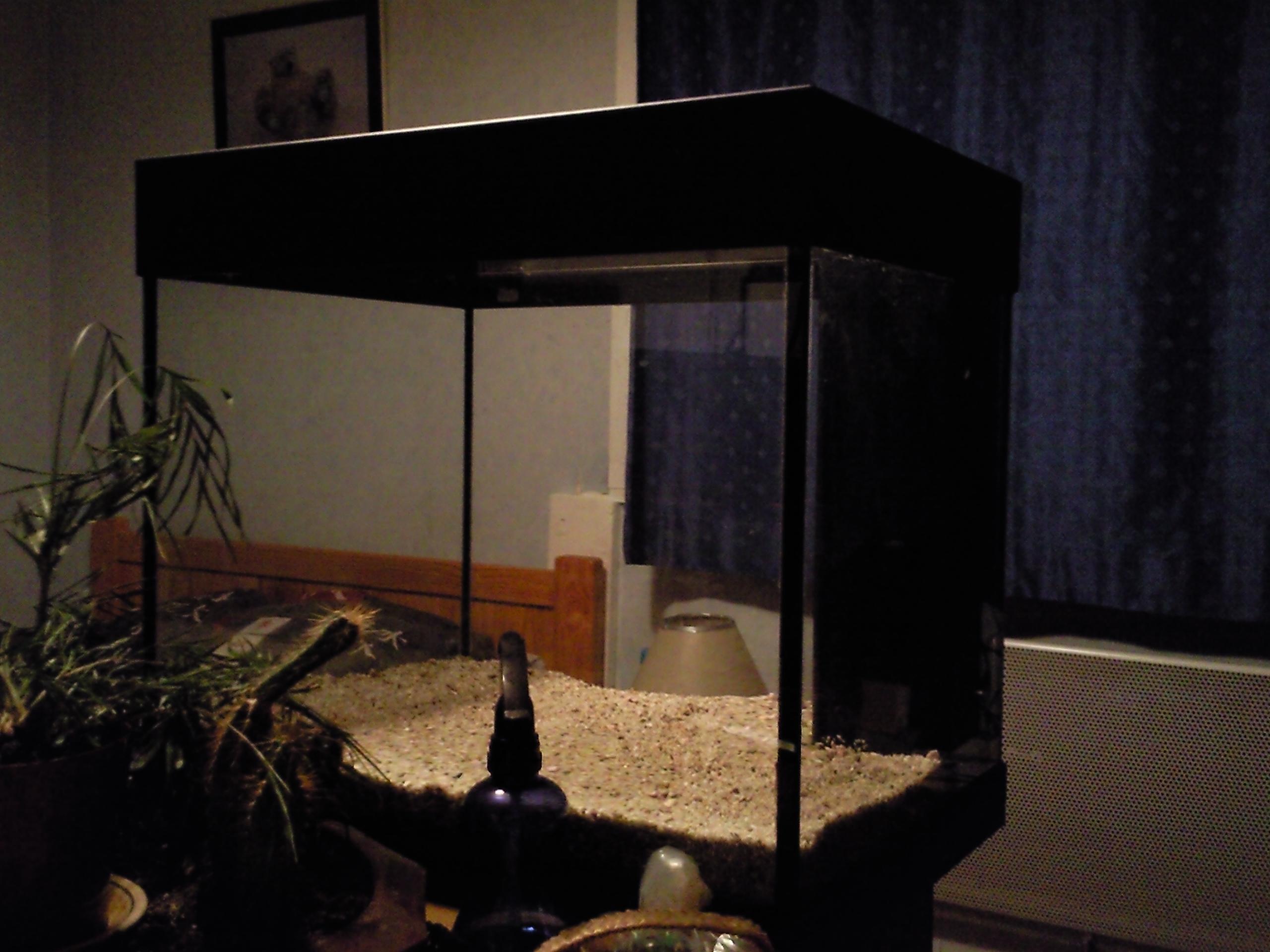 aquarium chambre par spameur. Black Bedroom Furniture Sets. Home Design Ideas