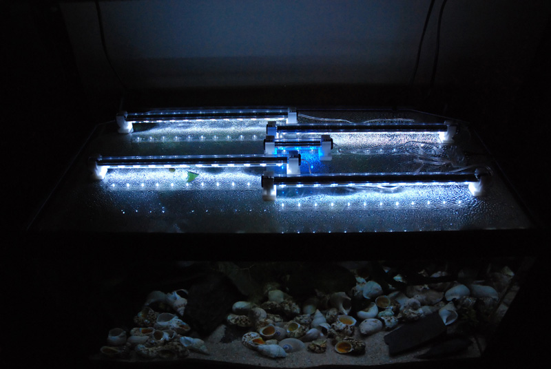 photo http://www.aquariophilie.org/images/article/ECLAIRAGE_AUX_LEDs_SIMPLE_ET_PAS_CHER_PARTIE_2_Modification_de_la_galerie_d_un_54_litres_tanganyika_a11141728_8.jpeg