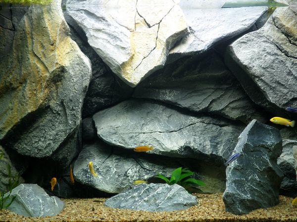 photo http://www.aquariophilie.org/images/article/Filtration-sur-pouzzolane-un-retour-d-experience_a09032222_1.jpeg