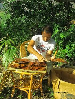 photo http://www.aquariophilie.org/images/article/La-Catappa-De-l-Arbre-a-l-Aquariophile-_a10241601_14.jpeg
