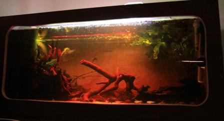 photo http://www.aquariophilie.org/images/article/La-creation-d-un-bac-en-bois_a02022036_6.jpeg