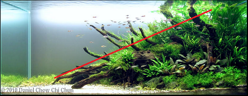photo http://www.aquariophilie.org/images/article/l-aquascaping_a09062237_17.png
