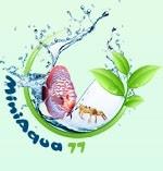 logo de Miniaqua77