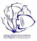 Voyage BSM