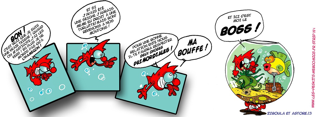 photo http://www.aquariophilie.org/images/peskits_le_poisson_artificiel.jpg