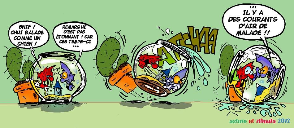 photo http://www.aquariophilie.org/images/peskits_le_rhume.jpg