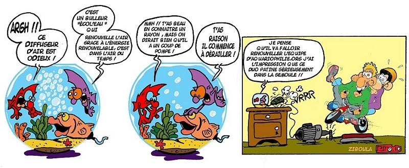 photo http://www.aquariophilie.org/images/peskits_tandem.jpg