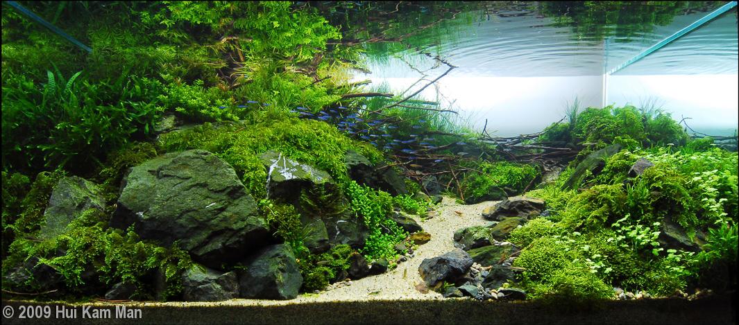 Realiser Decor Aquarium En Polystyr Ef Bf Bdne
