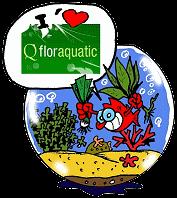 photo http://www.aquariophilie.org/img/peskits/logo_floraquatic.png