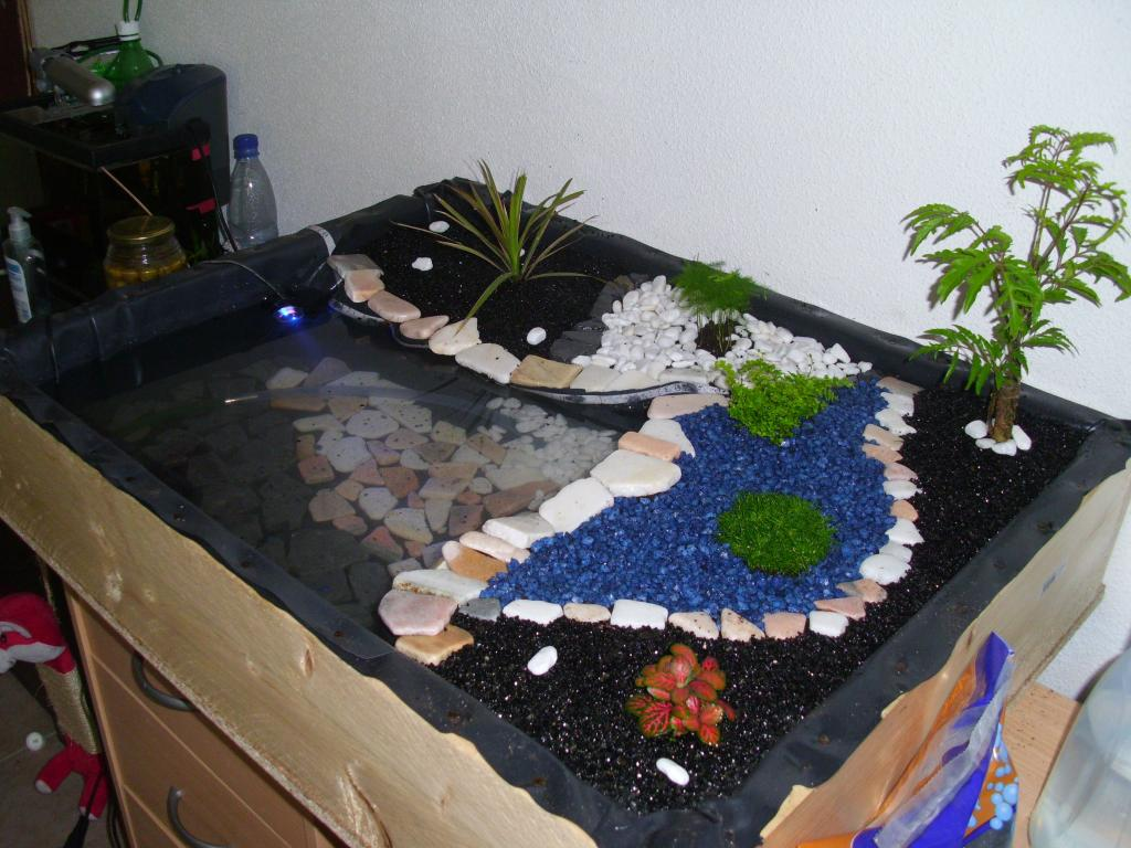 aquarium mini bassin apparte par alex25490. Black Bedroom Furniture Sets. Home Design Ideas
