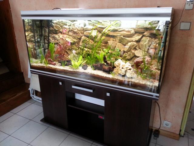 Aquarium rena 525 litres par sisko28 for Aquarium prix