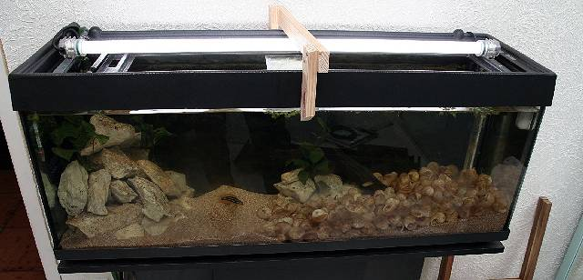 comment reparer un aquarium