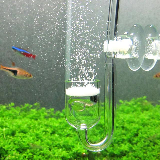 diffuseur de CO2 dans un aquarium