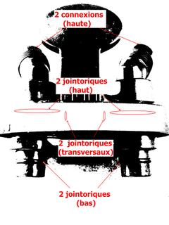 Probleme de bas la kokine - 5 9