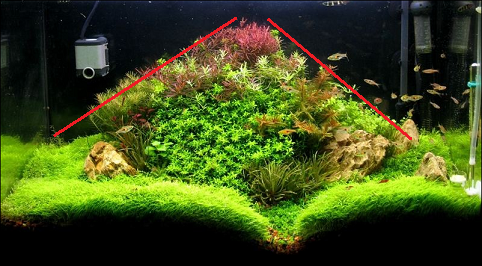 photo https://www.aquariophilie.org/images/article/l-aquascaping_a09062217_16.png