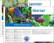 Le Calendrier 2007 de l'Association Aquariophilie.org