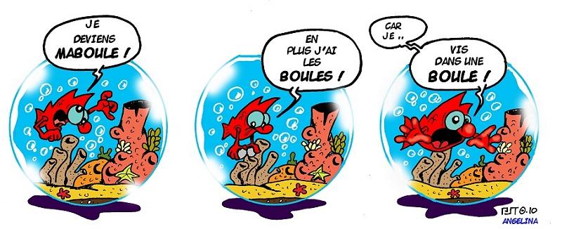 photo https://www.aquariophilie.org/images/peskits_maboule.jpg