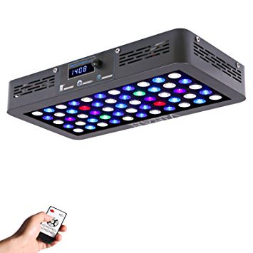 rampe éclairage LED en aquarium