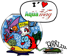 photo https://www.aquariophilie.org/img/peskits/logo_aquamag.png