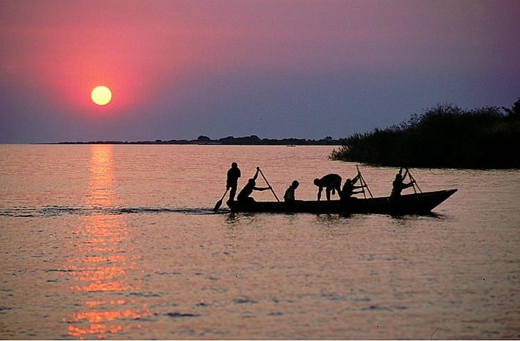 Photo Lac et poissons Tanganyika